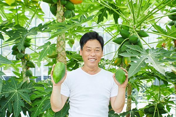 広島県世羅郡もちだファームは青パパイヤとバナナの生産者